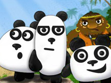 دببة الباندا الثلاثة