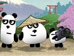 دببة الباندا الثلاثة 4